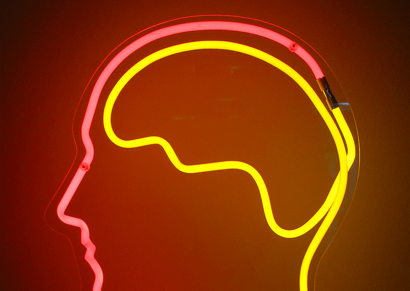 Тонкости нейробиологии вdigital