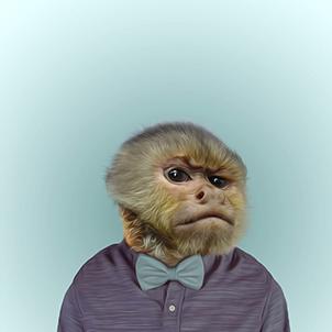 Какая обезьяна тобой рулит?
