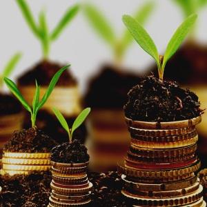 Запустили новый сайт для банка «Развитие»